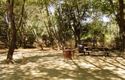Generally accessible campsites are available at the Back Ranch Meadows, as described above.
