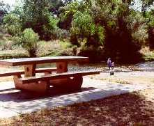 A shady accessible picnic table has a river view.  A beach wheelchair provides access to river.